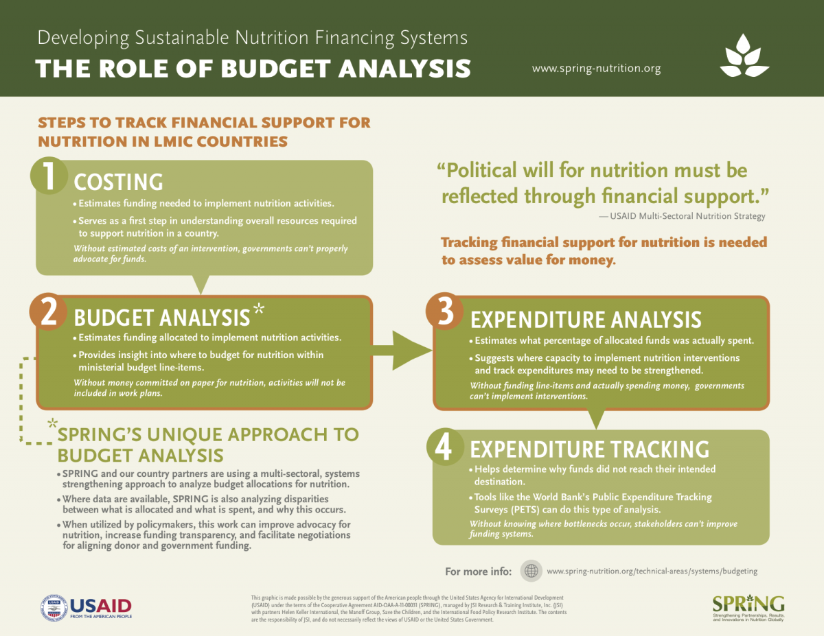 The Role of Budget Analysis