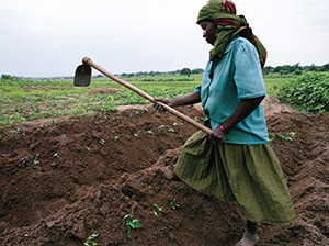 Woman in a field with a hoe © Scott Wallace/World Bank