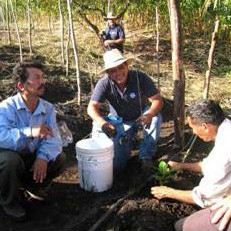 Photo of three people squatted around a bucket on the ground with another person in the background